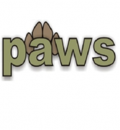 Logo for PAWS; Phoenix Animal Wellness Services