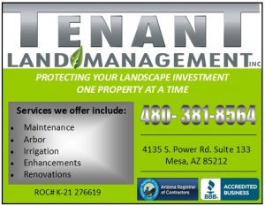 Featured image for Tenant Mangement